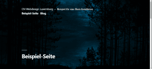 Screenshot Website-Beispiel 1