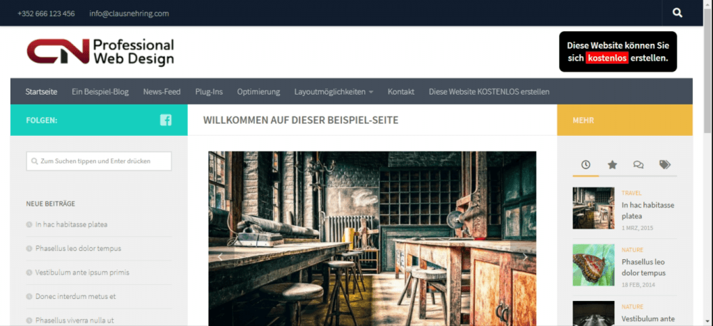 Website mit Hueman-Theme